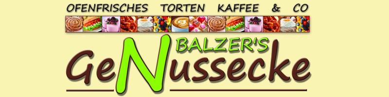 Balzerschild_web